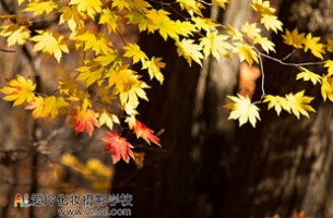 关门山摄影大赛作品